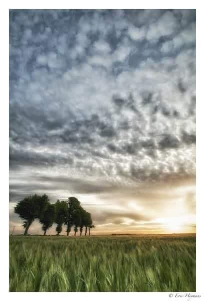 Photographie de Paysage de jour en mode portrait montrant un ciel nuageux très structuré. Utilisation du flash en plein jour.