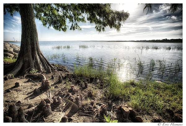 Photographie de Paysage - Un lac en Floride tôt le matin