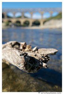 Provence - Pont du Gard - Element avaant-plan - tronc dans l'eau- Profondeur de champ courte - Eric Heymans - Photo originale