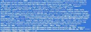 Exemple code source balise ALT